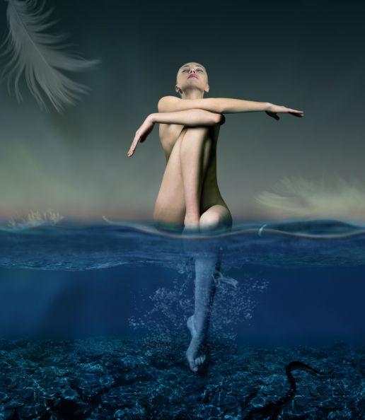 一位失业者的摄影作品集-The swan