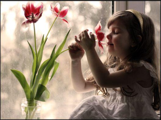 纯真的少女时代-读花的想法