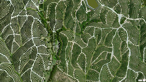 29张太空中的卫星拍摄的地球照片-西班牙,Huelva葡萄园