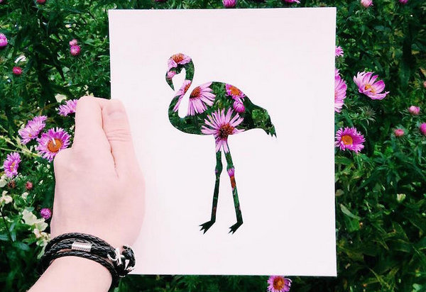 NikolaiTolsty:以动物剪纸视角看自然界