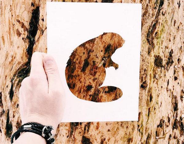 NikolaiTolsty:以动物剪纸视角看自然界4