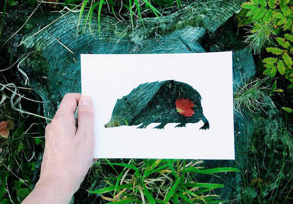 NikolaiTolsty:以动物剪纸视角看自然界7