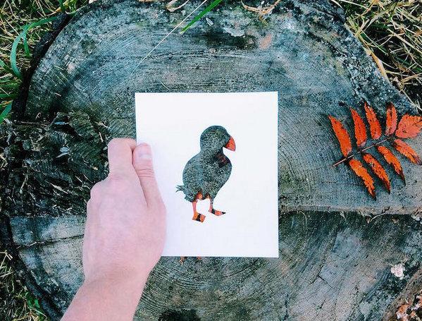 NikolaiTolsty:以动物剪纸视角看自然界9