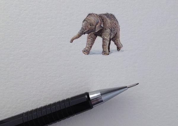 Rothshank 小小的微型铅笔画-小象