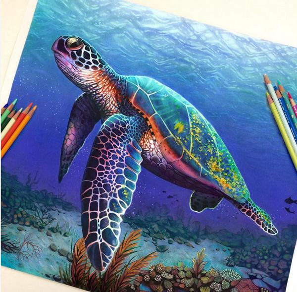 Morgan Davidson 真假难辨的彩色铅笔画2