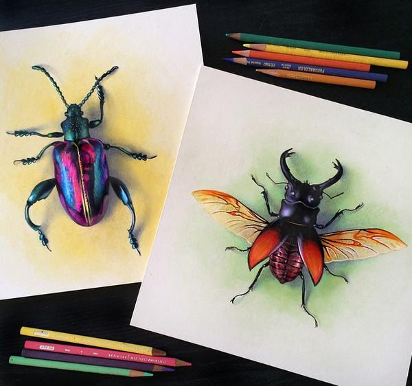 Morgan Davidson 真假难辨的彩色铅笔画6