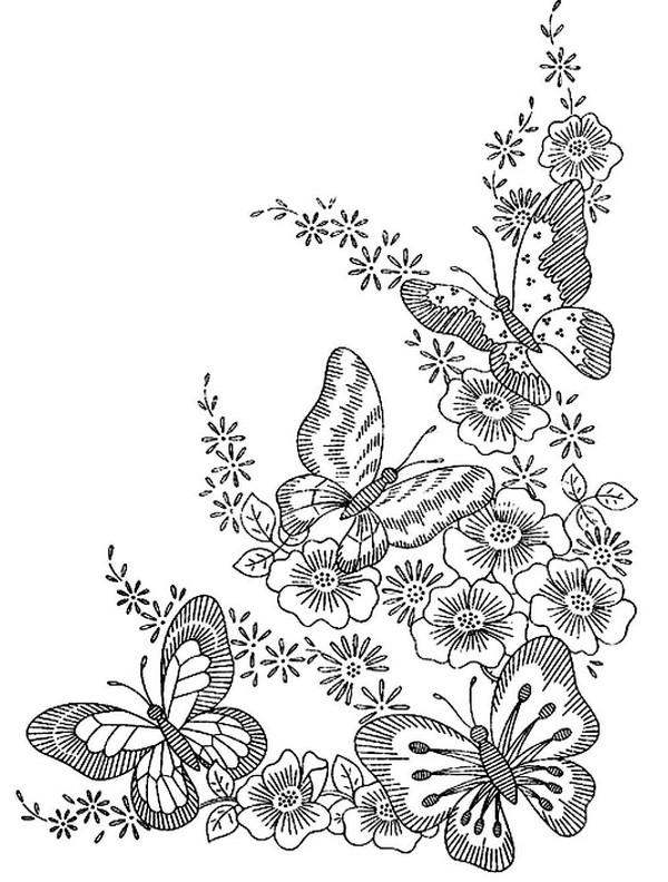 张适合儿童涂色的蝴蝶绘本8