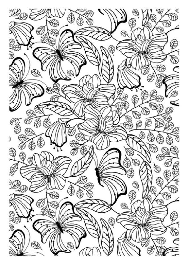 张适合儿童涂色的蝴蝶绘本11