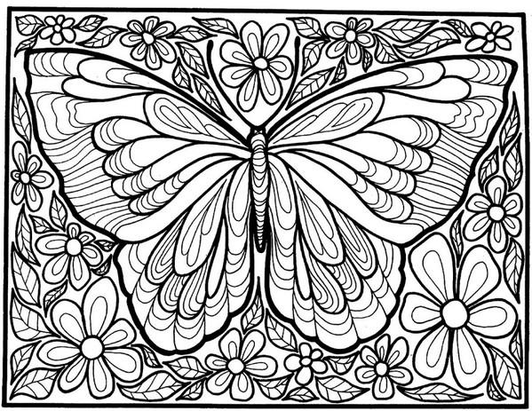 张适合儿童涂色的蝴蝶绘本12