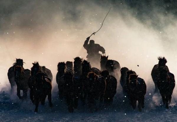 2016国家地理年度旅行摄影获奖作品集