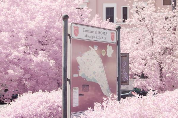 Milan Racmolnar 粉红世界红外线摄影集