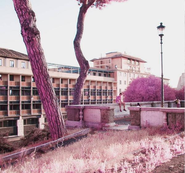 Milan Racmolnar 粉红世界红外线摄影集4