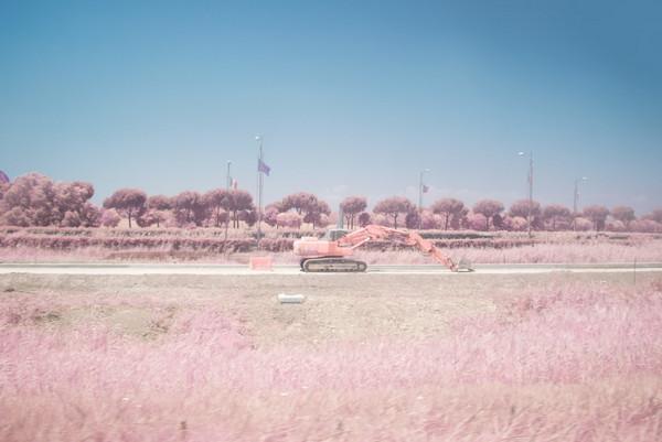 Milan Racmolnar 粉红世界红外线摄影集8