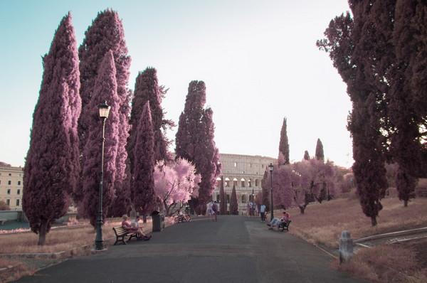 Milan Racmolnar 粉红世界红外线摄影集9