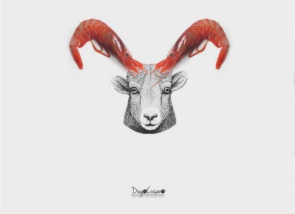 大虾、羊头