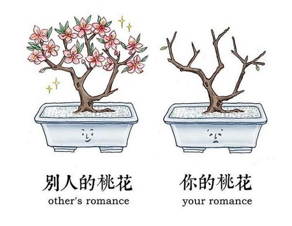 别人的桃花和你的桃花