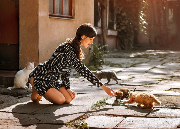 乌克兰美女和猫