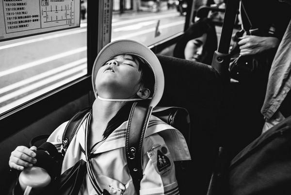 2017年索尼世界摄影奖优秀作品欣赏11