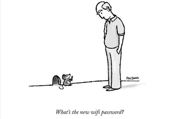 What's the new wifi password?